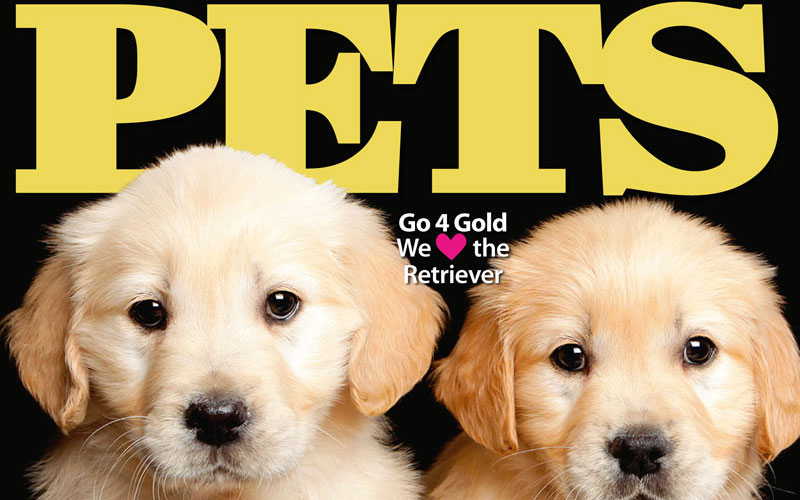 PETS 50: On Sale Now!