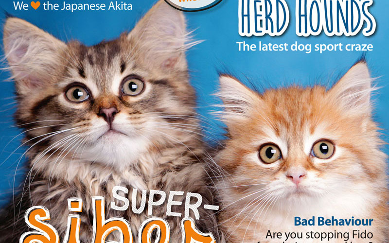 PETS 56: On Sale Now!