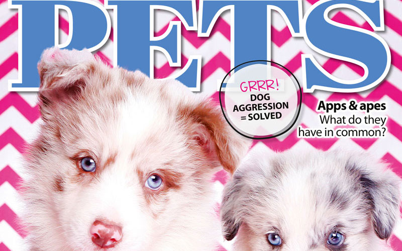 PETS 58: On Sale Now!