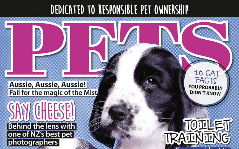 PETS 61: On Sale Now!