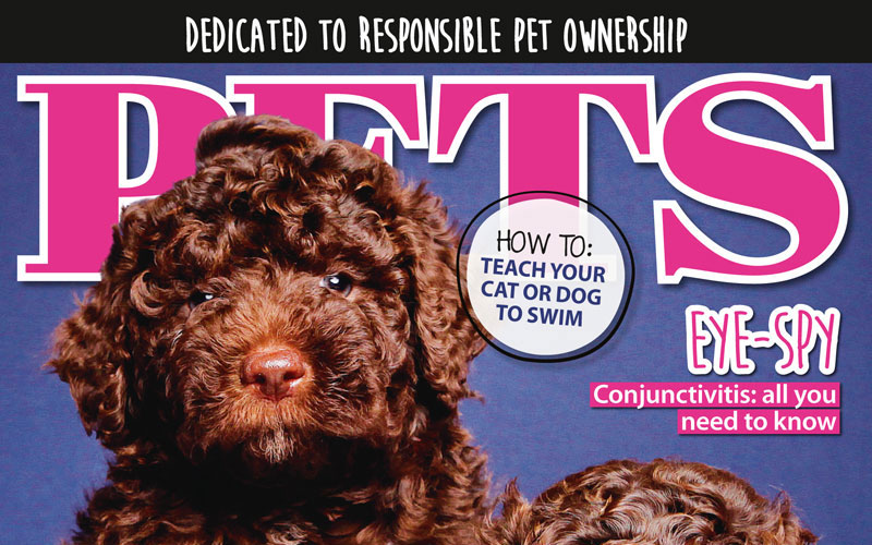 PETS 63: On Sale Now!