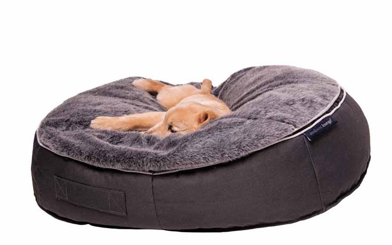 Premium Doggy Lounge