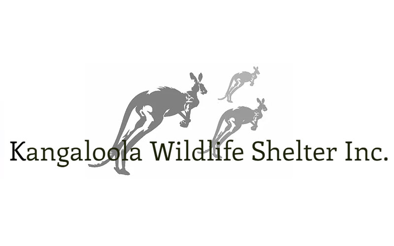 Kangaloola Wildlife Shelter Inc