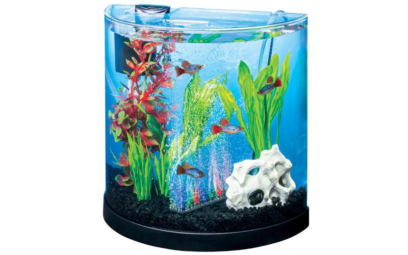 Tetra ColourFusion 11L Half Moon Aquarium
