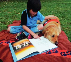 Story dogs: how canines are teaching children to read